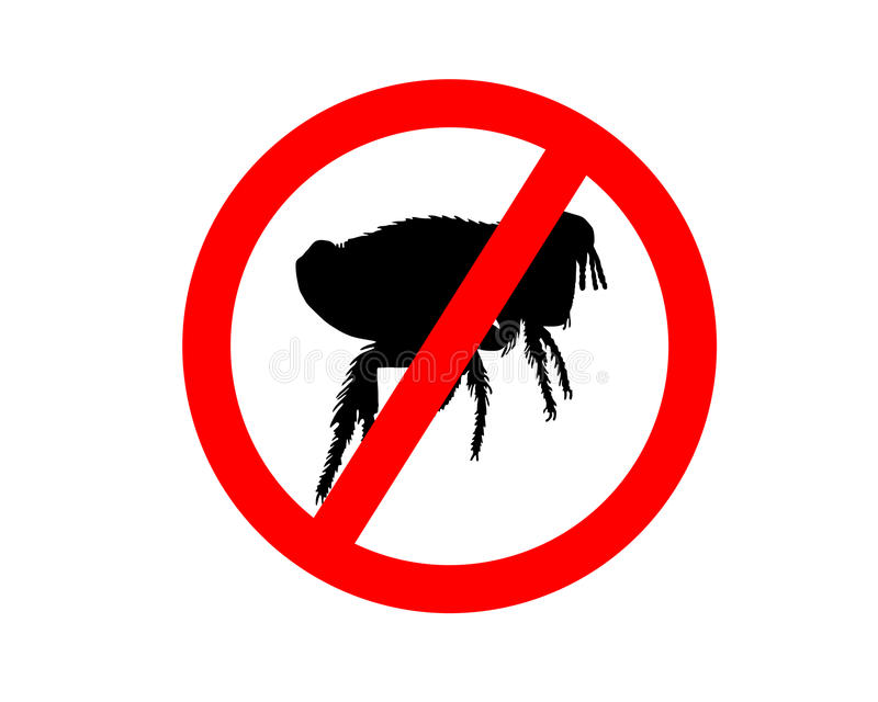 Prohibition sign for fleas on white. Background royalty free illustration
