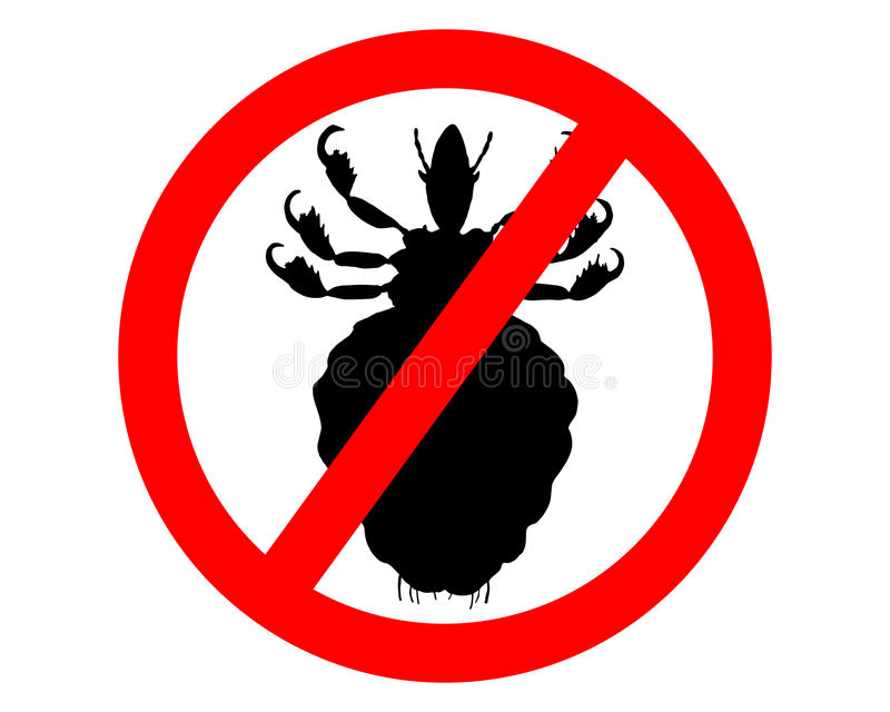 Prohibition sign for lice. On white background royalty free illustration
