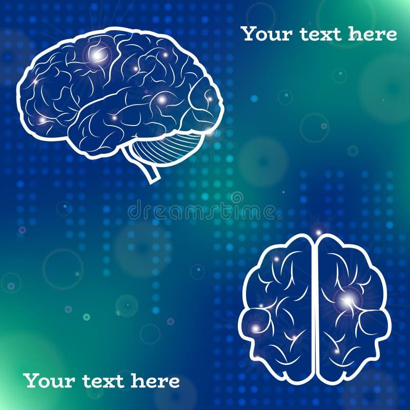 Proiezioni del cervello umano royalty illustrazione gratis