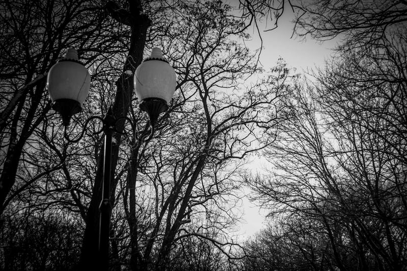Projecteurs de parc de Gorki photos stock