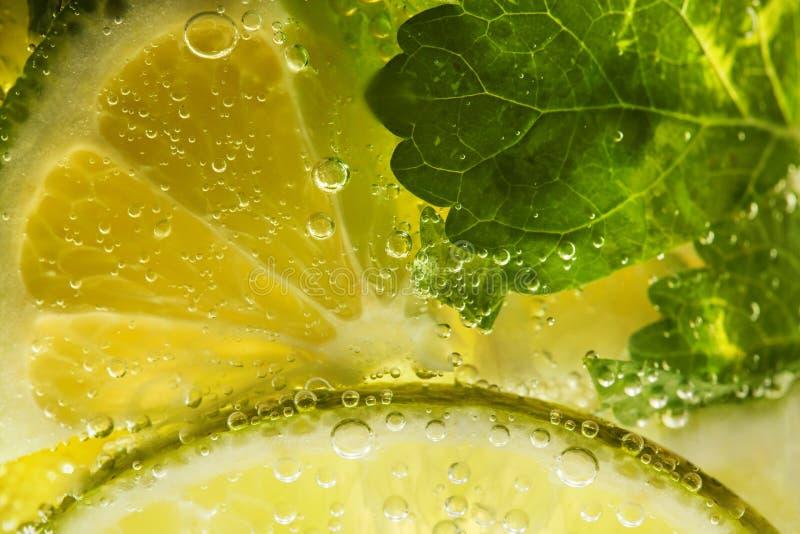 Projectile d'instruction-macro de cocktail de Mojito photographie stock
