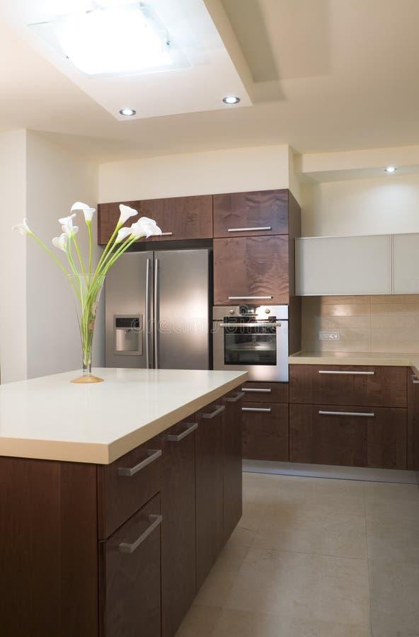 projekt kuchni luksus obrazy stock