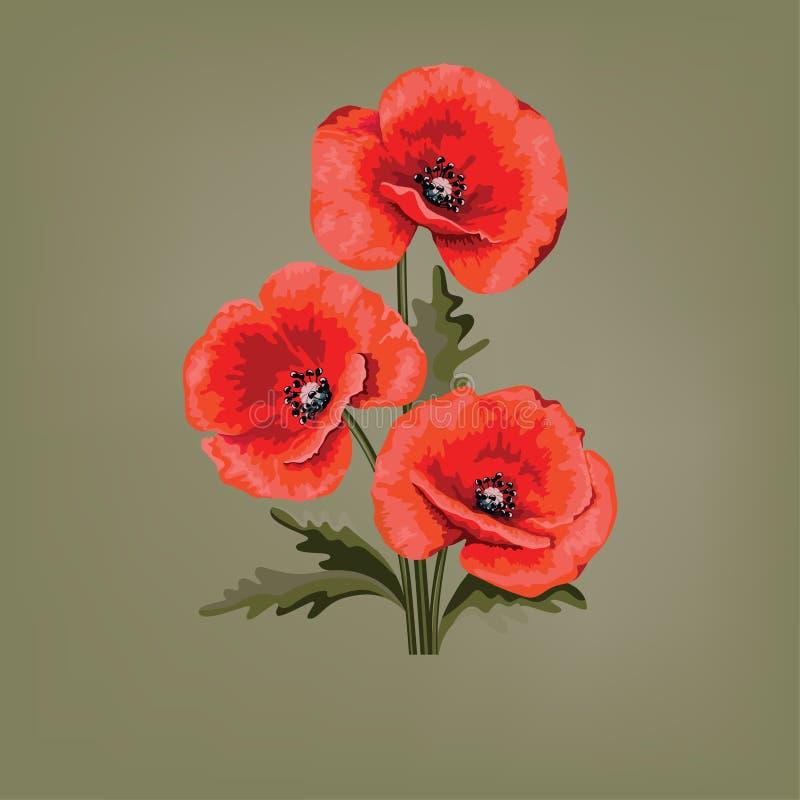 projekt kwiecisty abstrakcyjne czerwone maki Maczek z liśćmi royalty ilustracja