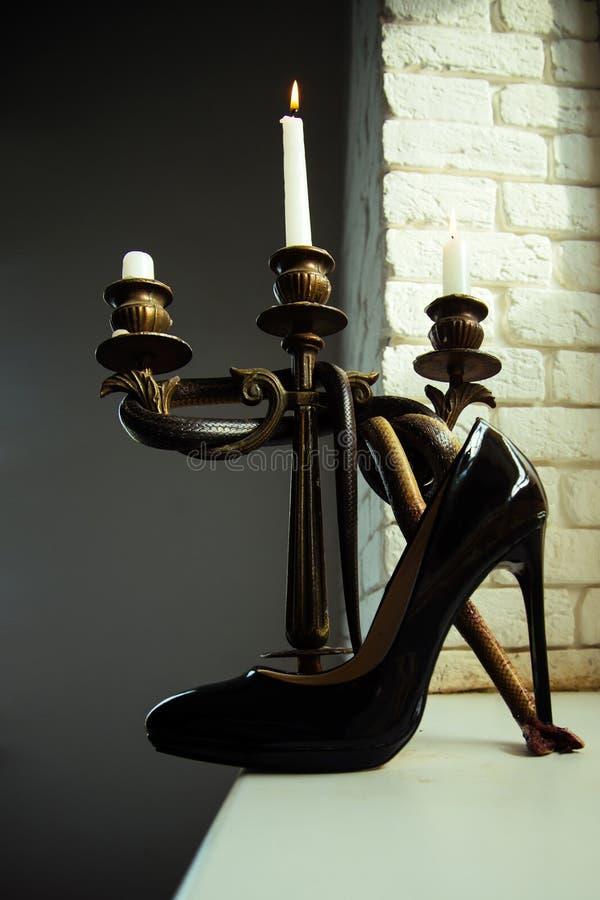 Projekta but czarny skóra stojak na szpilki z wężem zawijającym wokoło świeczka właściciela Projekta życie i obuwie wciąż obraz royalty free