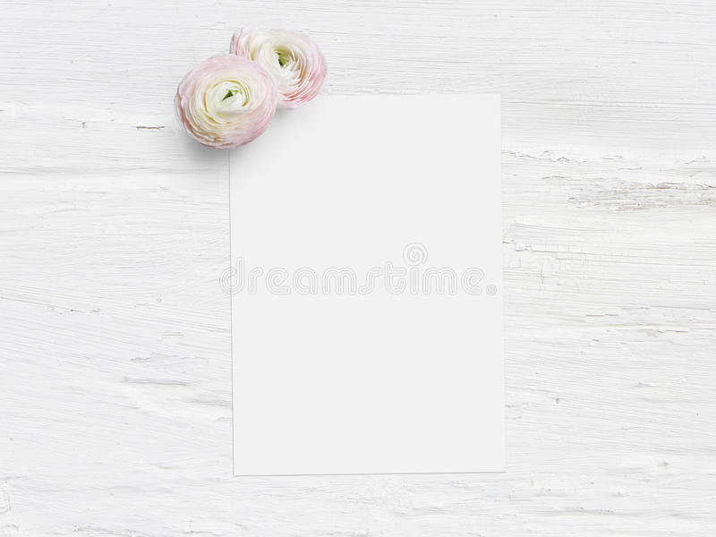 Projektująca akcyjna fotografia Kobiecy cyfrowy produktu mockup z uttercup kwiatami, Ranunculus, pusta lista papierowy i podławy fotografia stock