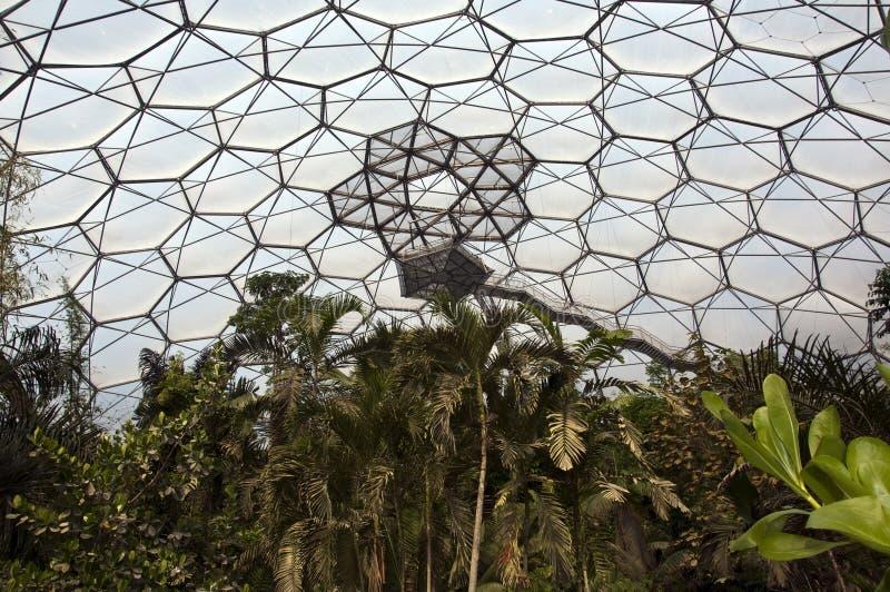 Projet d'Éden - plate-forme de surveillance de forêt humide photographie stock libre de droits