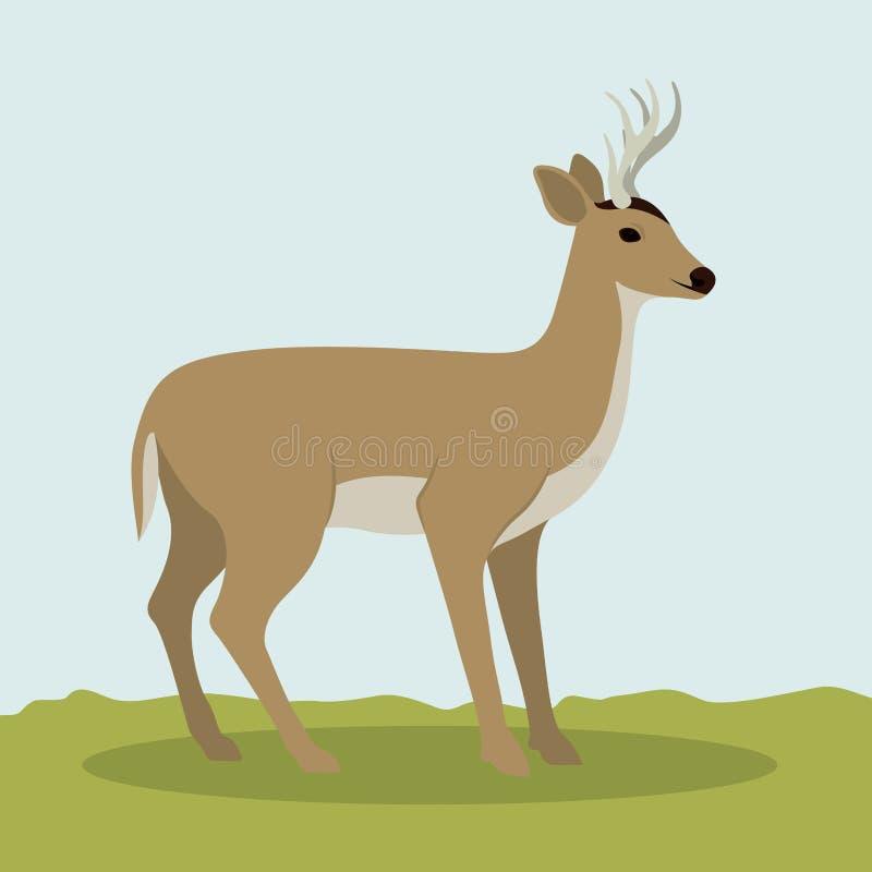 Projeto animal dos cervos coloridos ilustração stock