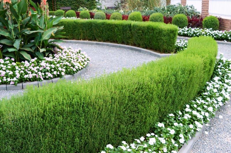 Projeto bonito da jarda Camas e conversão de florescência de flor Flores e arbustos decorativos na jarda imagens de stock