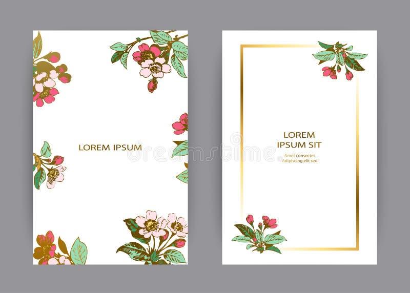 Projeto botânico do molde do cartão do convite do casamento, flores de sakura e folhas tiradas mão em ramos, flor de cerejeira ru ilustração stock