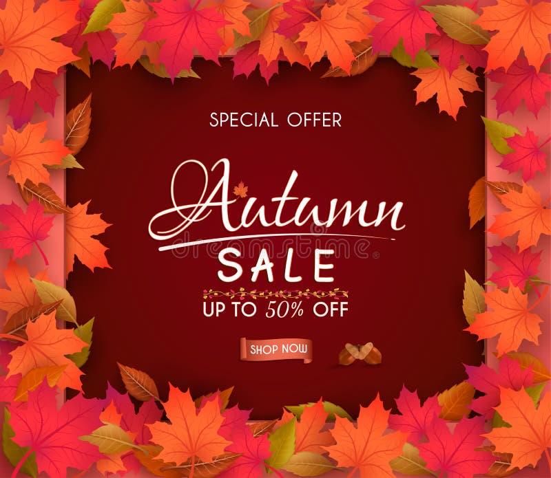 Projeto da bandeira da venda do outono da oferta especial com as folhas sazonais coloridas da queda fotos de stock royalty free