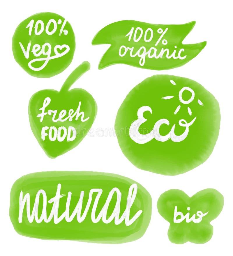 Projeto da etiqueta do vegetariano O molde pintado à mão do logotipo da aquarela, planta baseou o ícone do logotipo do alimento g ilustração stock