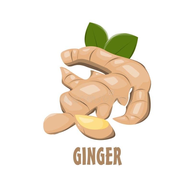 Projeto da exploração agrícola de Logo Ginger ilustração royalty free
