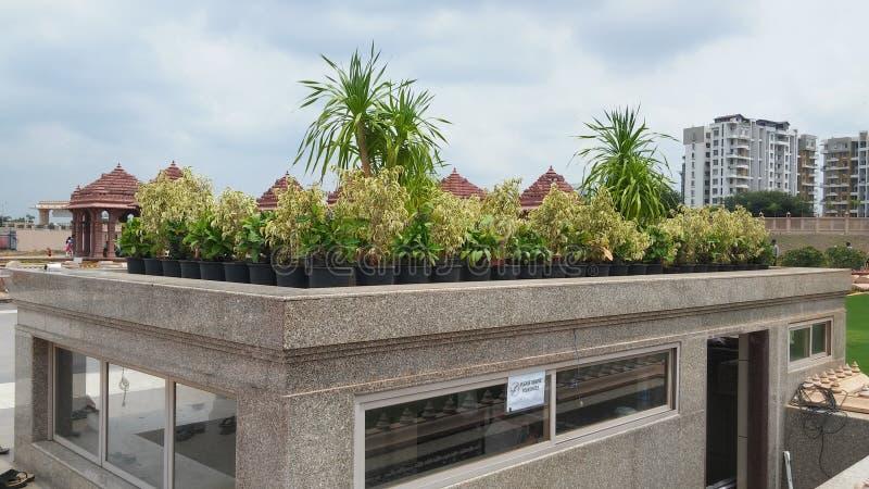 Projeto da paisagem da grama do templo fotos de stock royalty free
