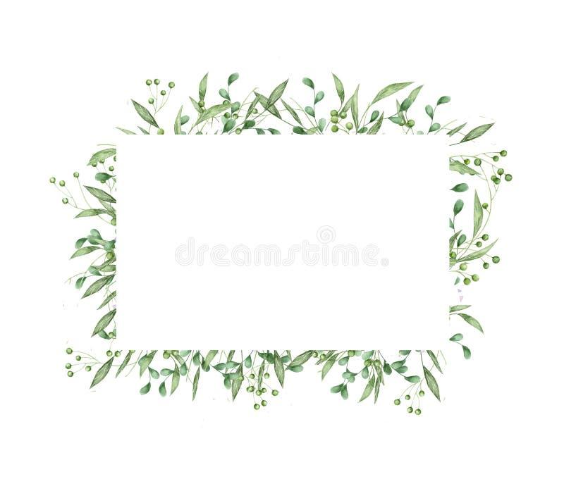 Projeto de cartão floral das hortaliças: o verde do ramo deixa o quadro do retângulo O casamento convida o illus tirado mão da ar ilustração stock