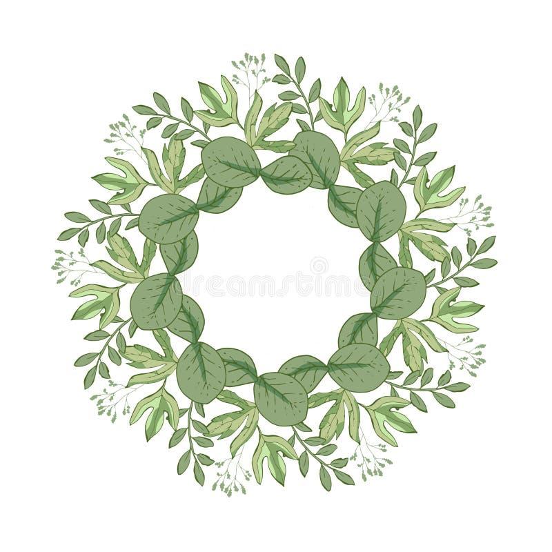 Projeto de cartão floral do vetor com folhas verdes hortaliças elegantes, floresta redonda, quadro bonito bonito das ervas da gri ilustração royalty free