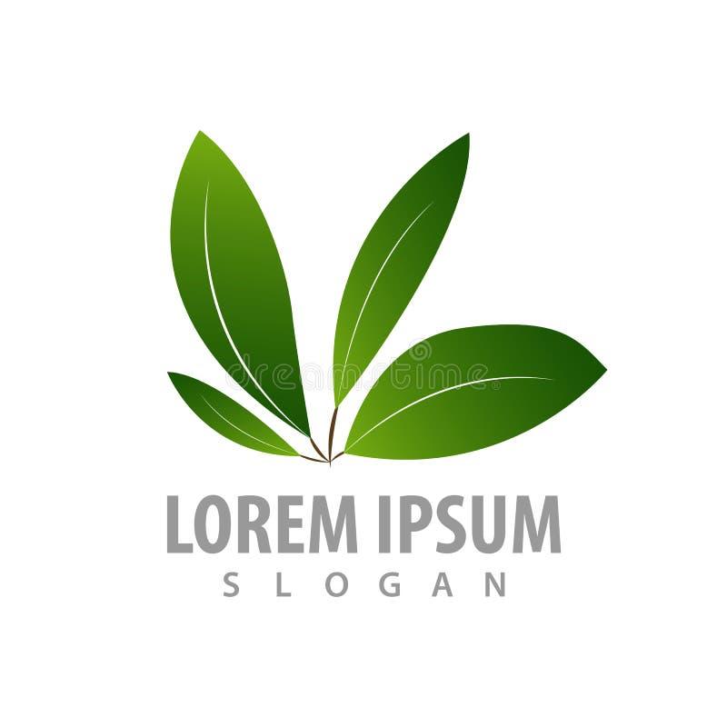 Projeto de conceito do logotipo de quatro folhas Vetor gráfico do elemento do molde do símbolo ilustração stock