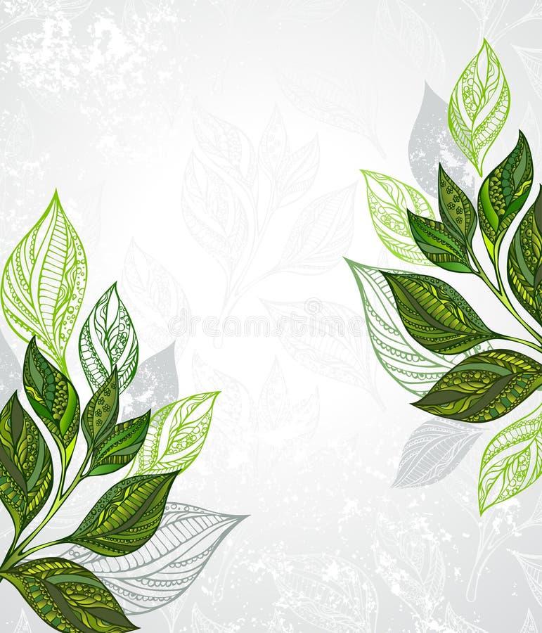 Projeto do chá ilustração stock