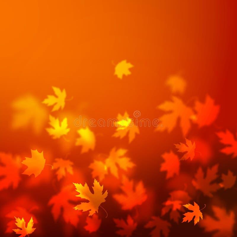 Projeto do fundo das folhas de outono do vetor, contexto vermelho borrado unfocused das folhas de bordo ilustração royalty free