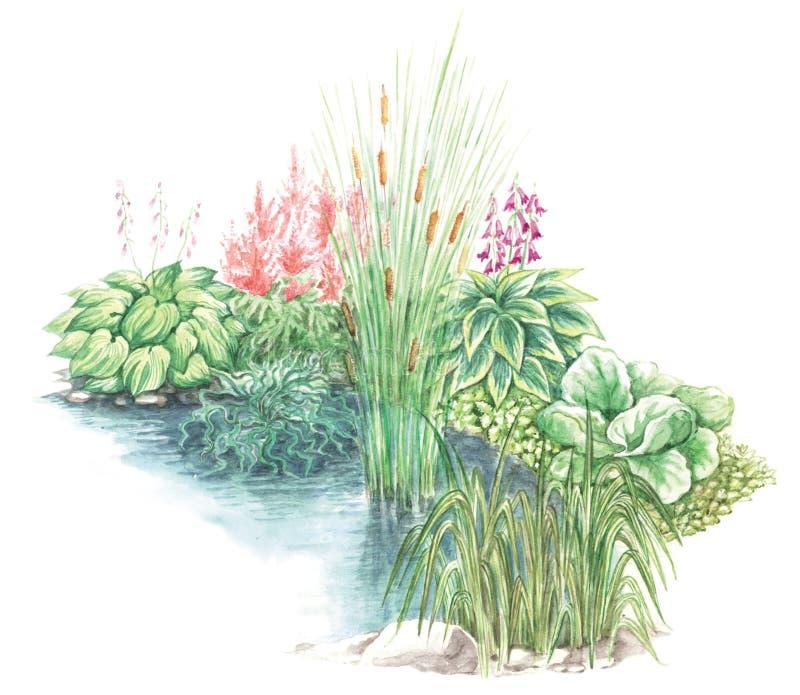 Projeto do jardim de pouca lagoa ilustração do vetor