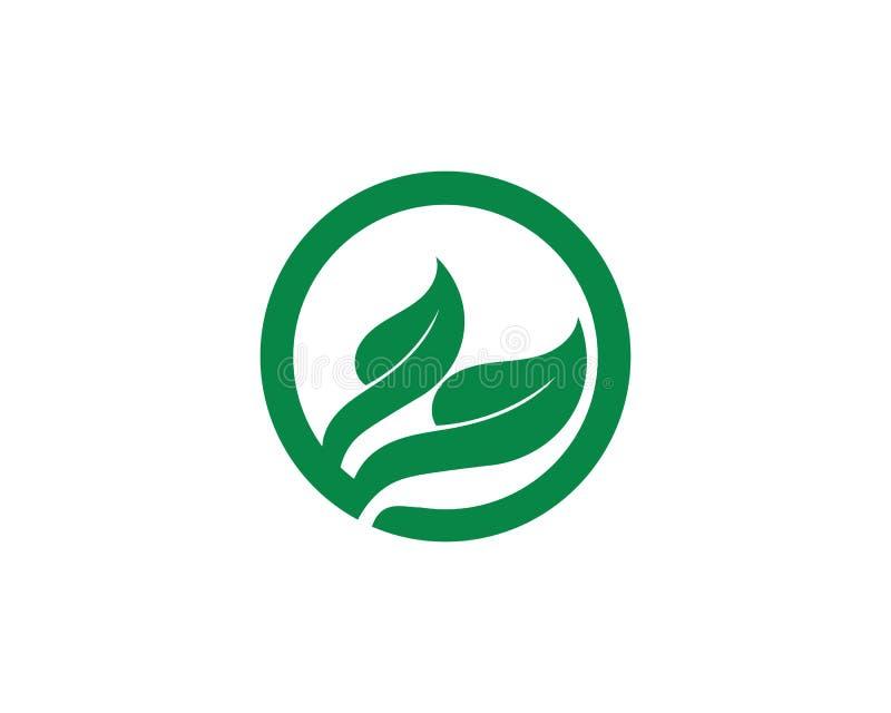 Projeto do logotipo do vetor da folha da ?rvore, conceito eco-amig?vel ilustração do vetor