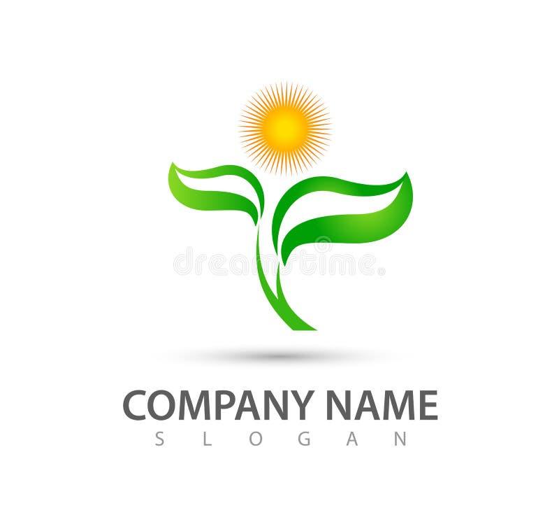 Projeto do logotipo do vetor do sol da folha da árvore, conceito eco-amigável Natureza, ilustração natural, verde do vetor do con ilustração royalty free