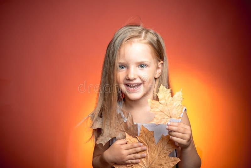 Projeto do outono Alegrias da infância Crianças engraçadas adoráveis das crianças Rapaz pequeno bonito Olá! setembro novembro foto de stock