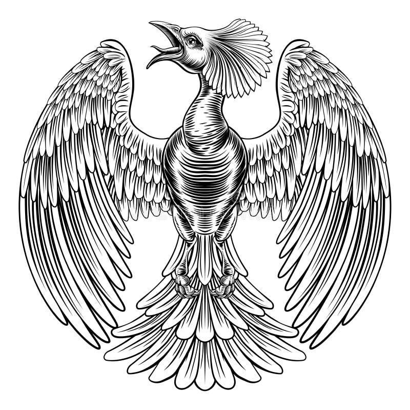 Projeto do pássaro de Phoenix do pavão ilustração do vetor