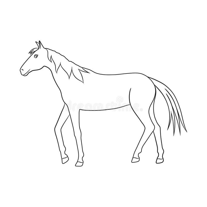 Projeto do vetor do cavalo e para dapple o símbolo Ajuste do cavalo e do ícone do vetor da fauna para o estoque ilustração stock