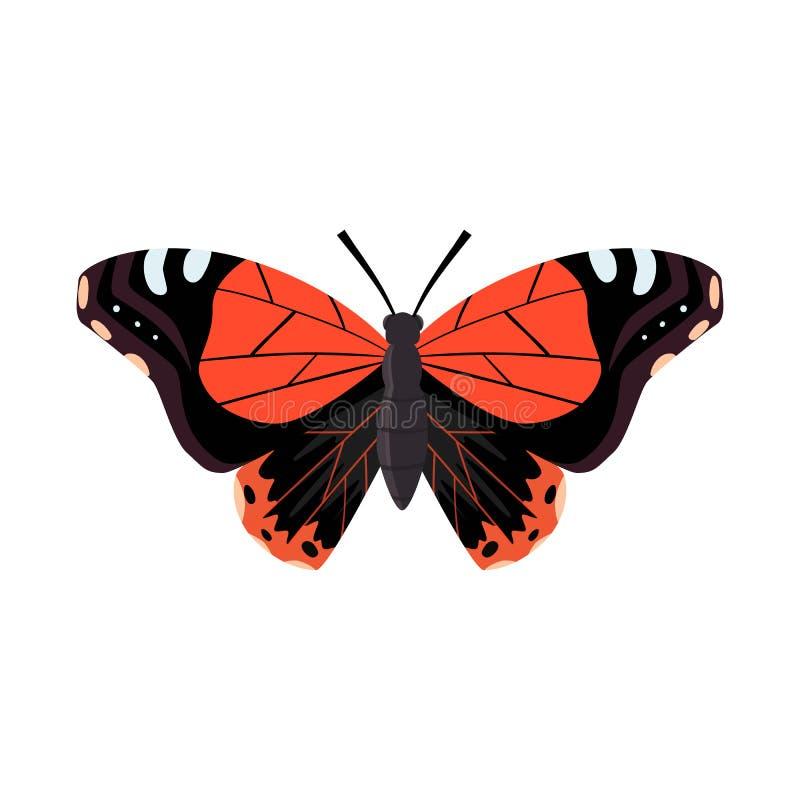 Projeto do vetor da borboleta e do logotipo de voo Ajuste da borboleta e da ilustração conservada em estoque mágica do vetor ilustração stock