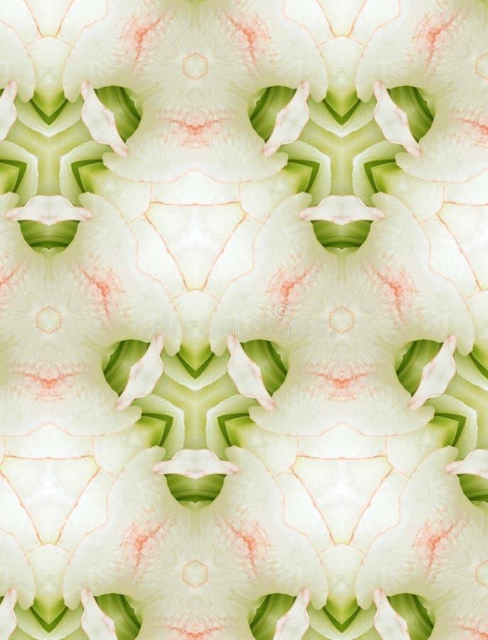 Projeto floral abstrato para o fundo ilustração royalty free
