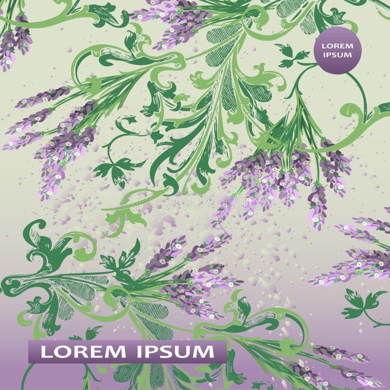 Projeto floral da tampa do teste padrão da alfazema Flor barroco tirada mão ilustração stock