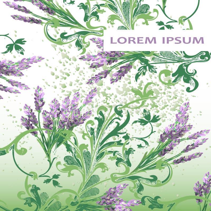 Projeto floral da tampa do teste padrão da alfazema Flor barroco tirada mão ilustração royalty free