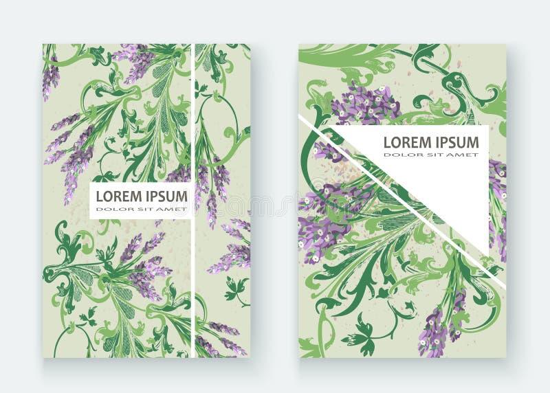 Projeto floral da tampa do teste padrão da alfazema Flor criativa tirada mão ilustração stock