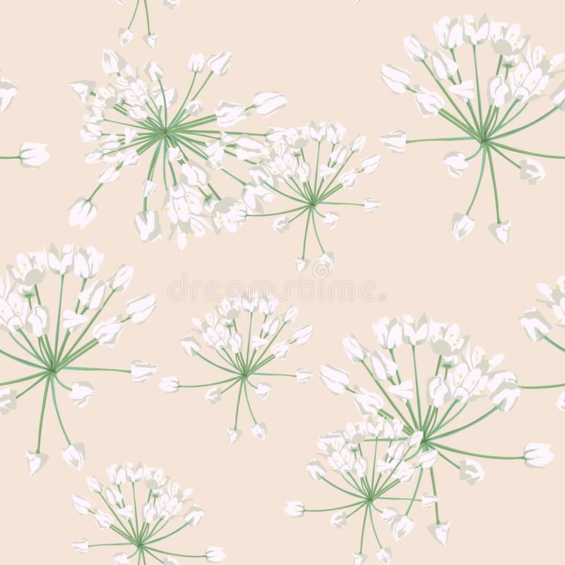 Projeto floral do estilo da aquarela do vetor sem emenda do teste padrão: ervas selvagens brancas Cópia romântica rústica do fund ilustração do vetor