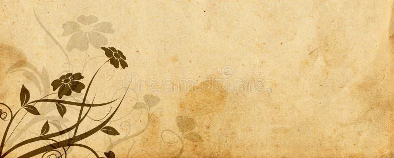 Projeto floral e pergaminho velho fotos de stock royalty free