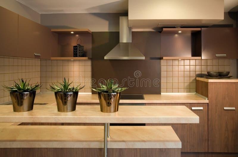 Projeto interior da cozinha. Elegante e luxuoso. foto de stock royalty free