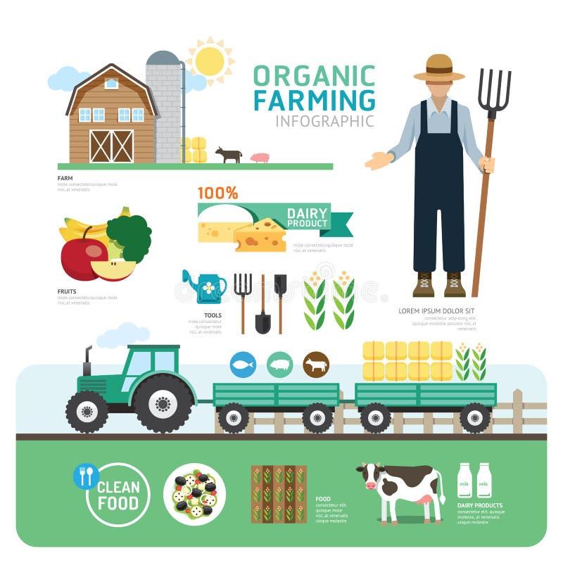 Projeto limpo orgânico Infographic do molde da boa saúde dos alimentos ilustração royalty free