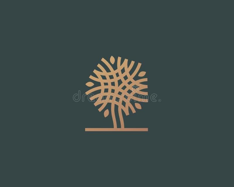 Projeto linear abstrato do ícone do logotipo da árvore do vetor Símbolo contínuo superior luxuoso universal ilustração do vetor