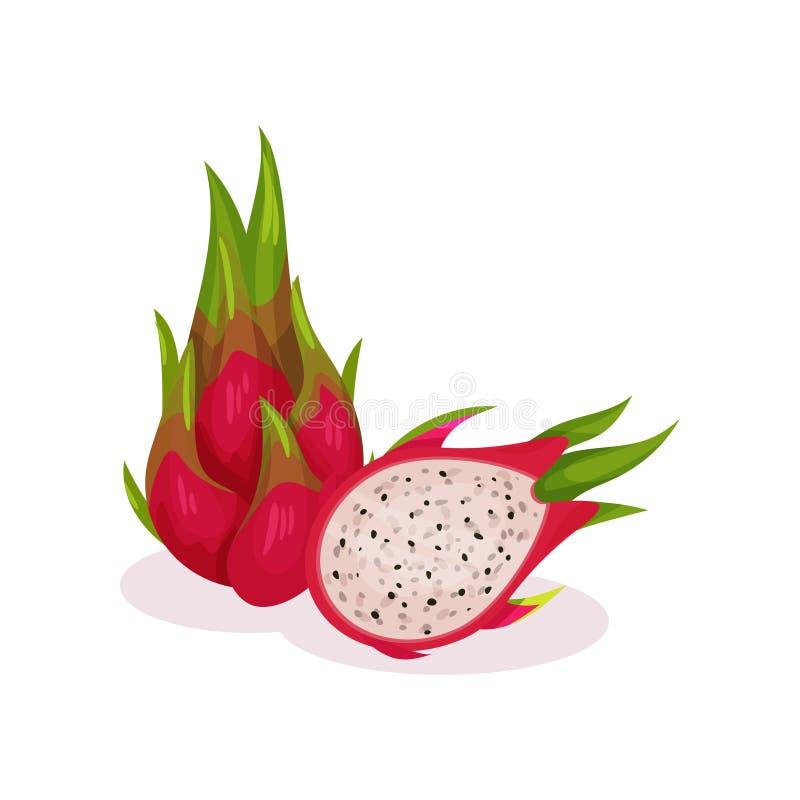 Projeto liso detalhado do vetor do todo e da metade do pitaya saboroso Fruta exótica Alimento biológico Produto saudável ilustração stock