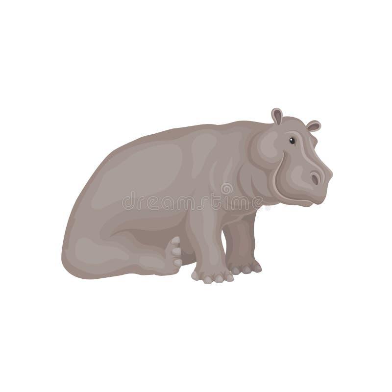 Projeto liso do vetor de sentar o hipopótamo adorável Grande animal africano Criatura selvagem Tema da fauna ilustração stock