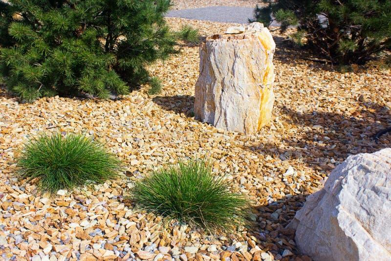 Projeto moderno do jardim com os grandes pedras e pinheiros foto de stock