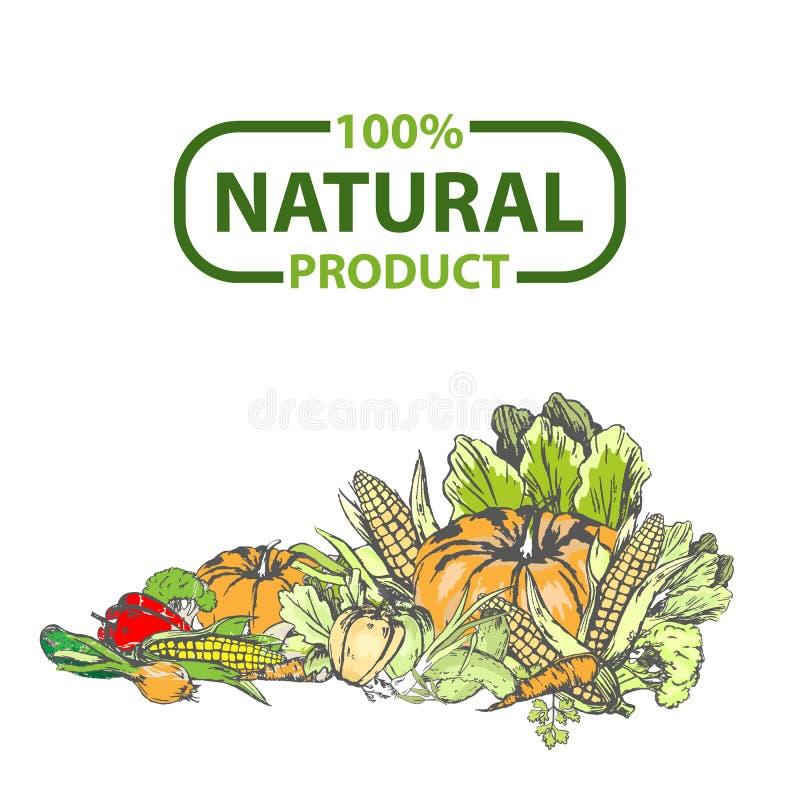 Projeto natural vetor dos alimentos frescos de 100 por cento ilustração royalty free