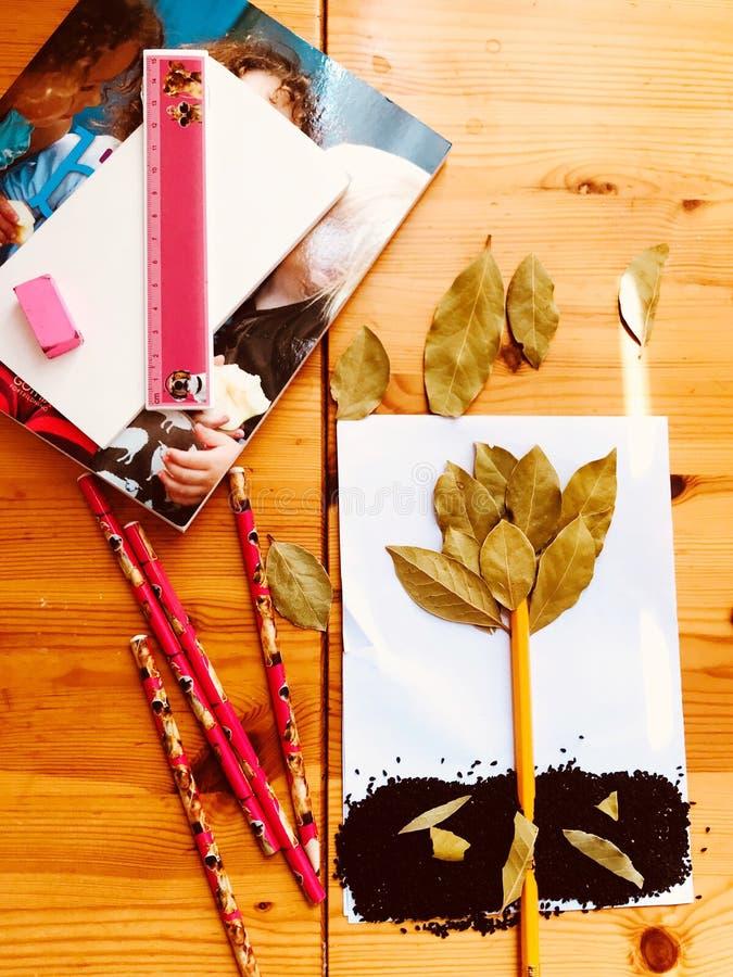 Projeto, queda das folhas, imagina??o do outono, passatempo foto de stock