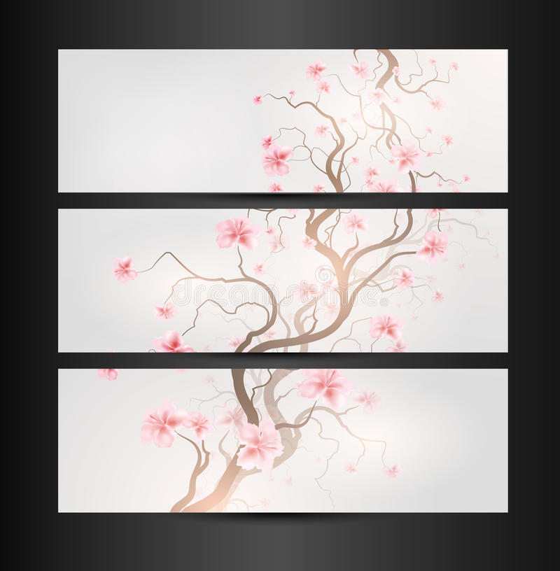 Projeto Sakura ilustração royalty free