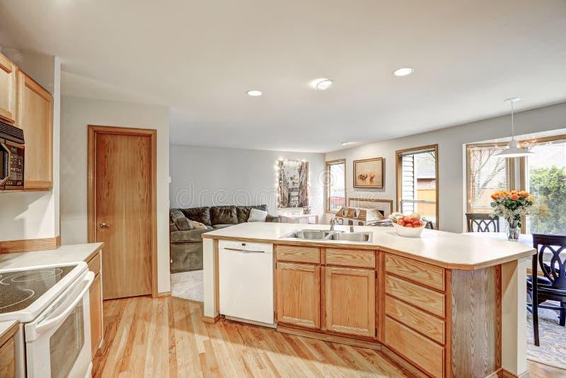 Projeto tradicional da sala da cozinha em cores dos pontos mortos foto de stock royalty free