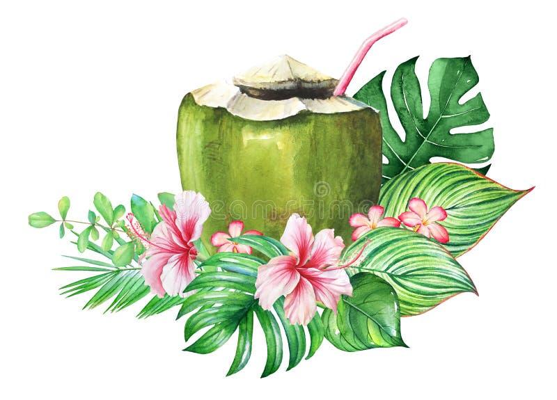 Projeto tropical com plantas da aquarela, flores e um coco com palha ilustração royalty free