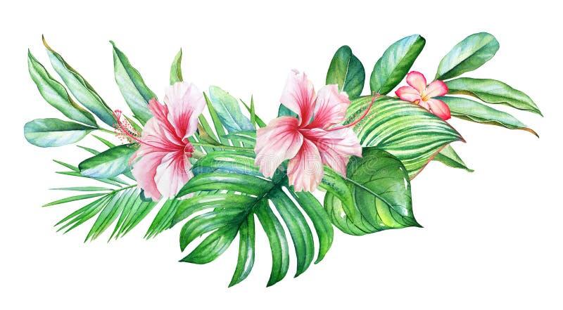 Projeto tropical da aquarela com flores e plantas no fundo branco ilustração stock