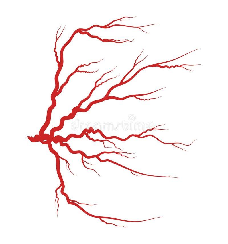 Projeto vermelho do ícone do símbolo do vetor da veia do olho ilustração royalty free