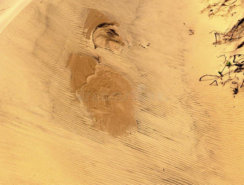Projetos da duna fotografia de stock