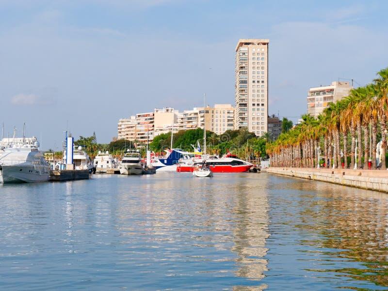 Promenad av palmträd i Alicante Sikt av porten och staden spain royaltyfri foto